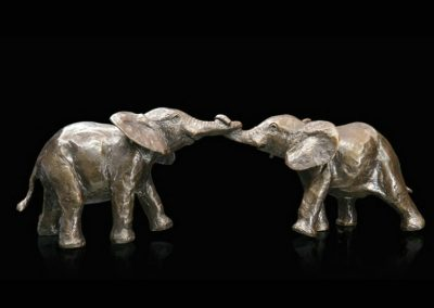 Baby Elephants Playing £190