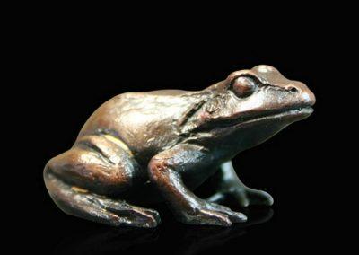 Baby Frog Sitting £69