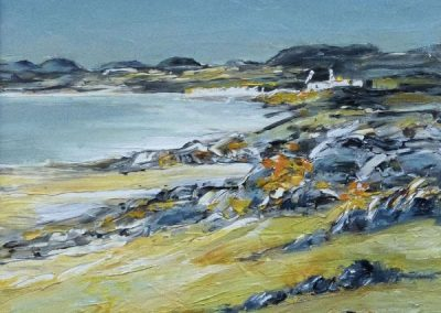 Grey sky and bright gorse, Isle of Harris Framed Price £595
