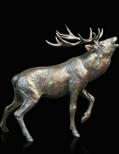 Stag Roaring £180