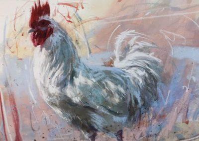 James Bartholomew White Cockerel Canvas Price £175 (Limited Edition Print)